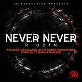 NEVER NEVER RIDDIM (RAW) by Various Artists