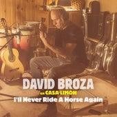 I'll Never Ride A Horse Again de David Broza