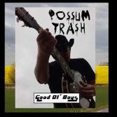 Good Ol' Boys by Possum trash