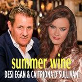 Summer Wine de Desi Egan