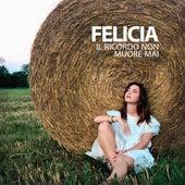 Il ricordo non muore mai by Felicia