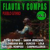 Flauta Y Compas Volumen 3 by Diego Carrasco