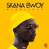 Raggatrap de Skana Bwoy