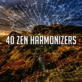 40 Zen Harmonizers de Meditación Música Ambiente