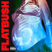 Afterlife de Flatbush Zombies