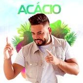 Ao Vivo no Quintal by Acácio