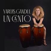 Un Canto de Yarelis Gandul