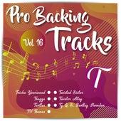 Pro Backing Tracks T, Vol.16 by Pop Music Workshop