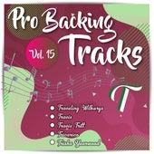 Pro Backing Tracks T, Vol.15 by Pop Music Workshop