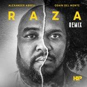 Raza (Remix) [feat. Osain Del Monte] by Havana D'Primera