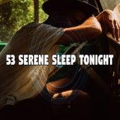 53 Serene Sleep Tonight by Einstein Baby Lullaby Academy