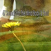 47 Sounds for the Mind Body & Soul de Zen Music Garden