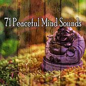 71 Peaceful Mind Sounds de Musica Relajante