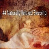 44 Naturally Relaxed Sleeping de Nature Sound Series
