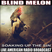 Soaking Up the Sun (Live) de Blind Melon