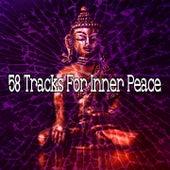 58 Tracks for Inner Peace de Zen Music Garden
