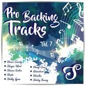 Pro Backing Tracks S, Vol.7 by Pop Music Workshop