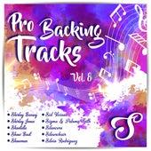 Pro Backing Tracks S, Vol.8 by Pop Music Workshop