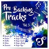 Pro Backing Tracks S, Vol.5 by Pop Music Workshop
