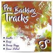 Pro Backing Tracks S, Vol.11 by Pop Music Workshop