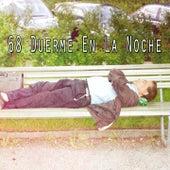 68 Duerme En La Noche de Sounds Of Nature