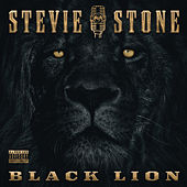 Black Lion by Stevie Stone