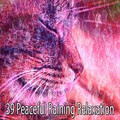 39 Peaceful Raining Relaxation by Rain Sounds (2)