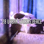 28 Urban Storms Peace by Relaxing Rain Sounds
