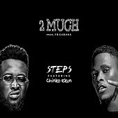 2 Much by Steps