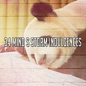 34 Mind S Storm Indulgences by Rain Sounds (2)