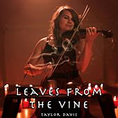 Leaves from the Vine (From