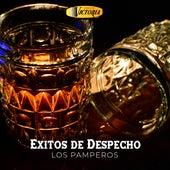Éxitos de Despecho von Los Pamperos