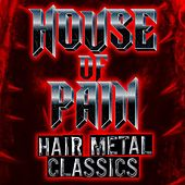 House of Pain: Hair Metal Classics by Various Artists