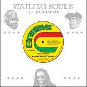 Shark Attack (feat. Alborosie) von Wailing Souls