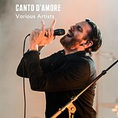 Canto d'amore by Miguel, Blond, Blue Angels, Bernardo Lafonte