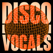 Disco Vocals: Soulful Dancefloor Cuts Featuring 23 Of The Best Grooves de Various Artists