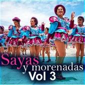 Sayas y Morenadas, Vol. 3 de Varios Artistas