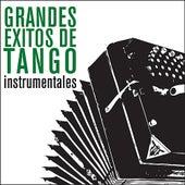 Grandes Éxitos de Tango - Instrumentales von Various Artists