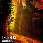 True Hits, Vol. 5 de Various Artists