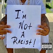 I'm Not a Racist de Plies