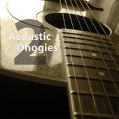 2 van Acoustic Dhogies