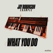 What You Do von Jay Robinson