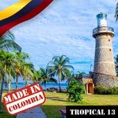Made in Colombia: Tropical, Vol. 13 de Varios Artistas