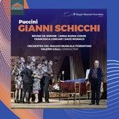 Puccini: Gianni Schicchi, SC 88 (Live) by Bruno De Simone