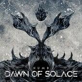 Numb (Studio Live Version) von Dawn Of Solace