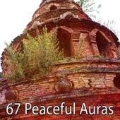 67 Peaceful Auras de Yoga Tribe