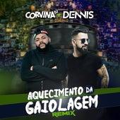 Aquecimento da Gaiolagem (Remix) by Corvina Dj