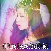 43 Pure Peace and Quiet de Ocean Sound