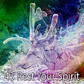 43 Rest Your Spirit de Water Sound Natural White Noise
