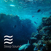 Soothing Water Sound for Camling down de Water Sound Natural White Noise